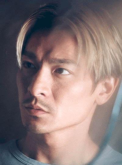 刘德华银狐发型分享展示图片