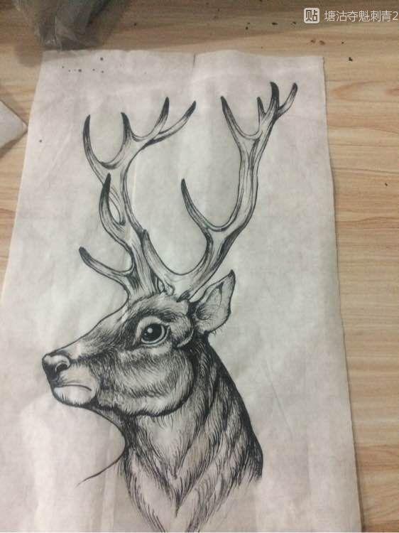 原创麋鹿纹身手稿图片