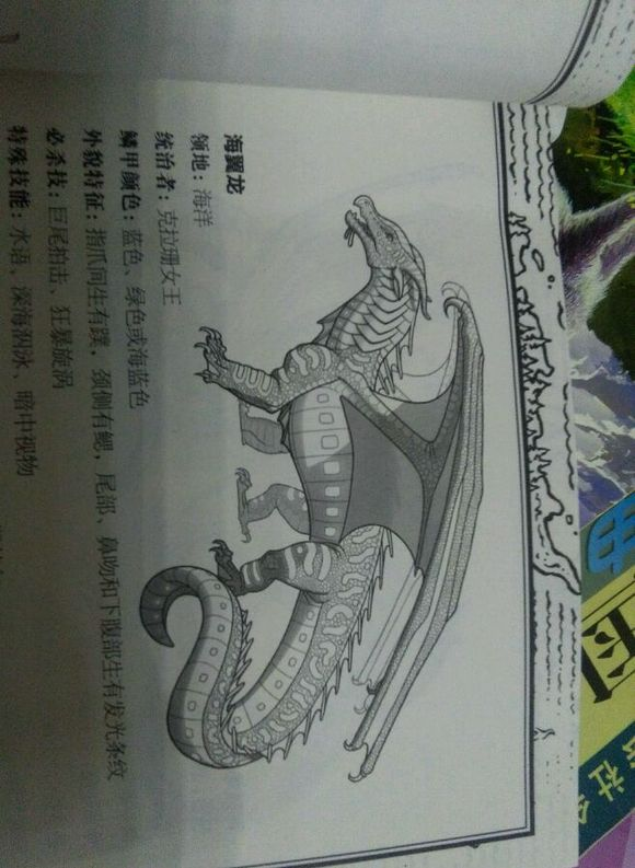 飞龙怎么画-简单的飞龙怎么画/一步一步教我画火龙/画图片