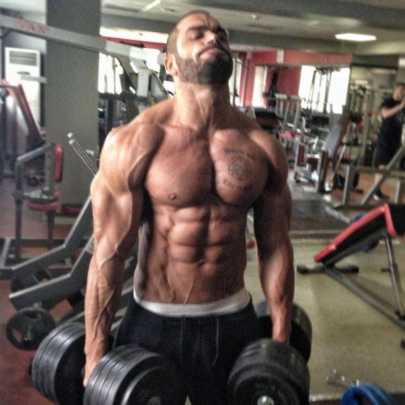 找了一些拉扎尔 安格洛夫的图片_健身吧_百度贴吧