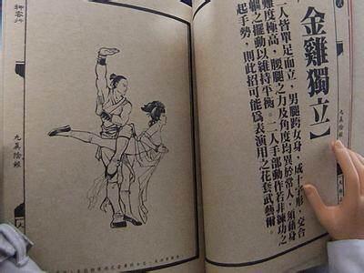 失传多年的武林绝学,请各位悉心图片