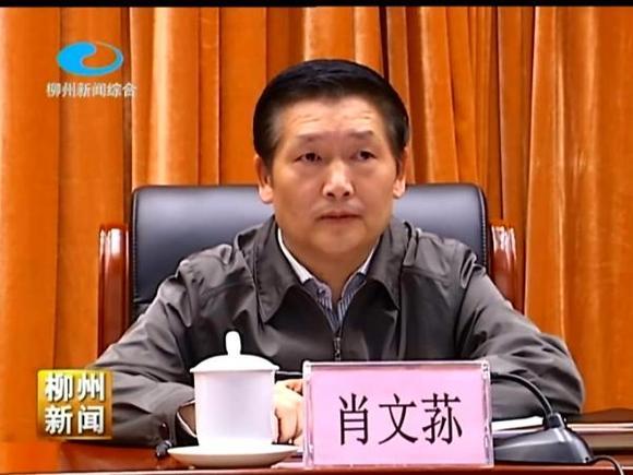 广西柳州市长肖文荪散步离奇落水死亡,死亡原因