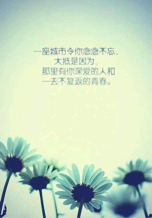 友谊图片带字唯美图片 友谊唯美文字图片 有关友谊的唯美图片 友谊图