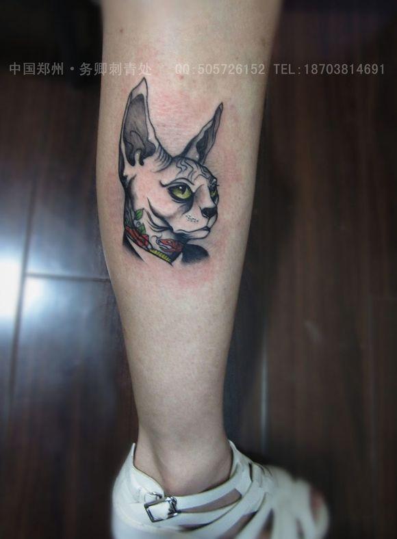 斯芬克斯猫纹身小图分享展示图片