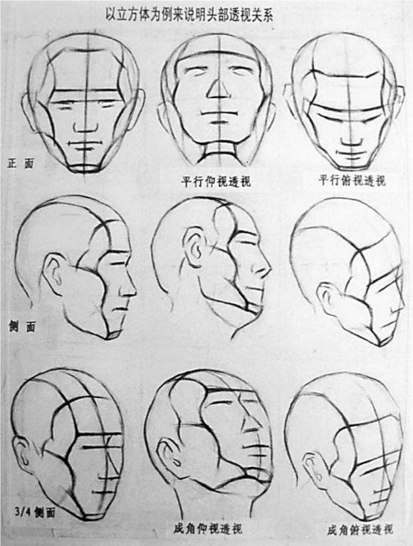 两外眼角与鼻尖的连结构成等腰三角形.图片