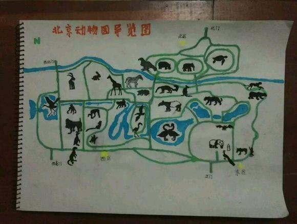 希望能对准备去北京动物园和北京海洋馆的朋友有所帮助.