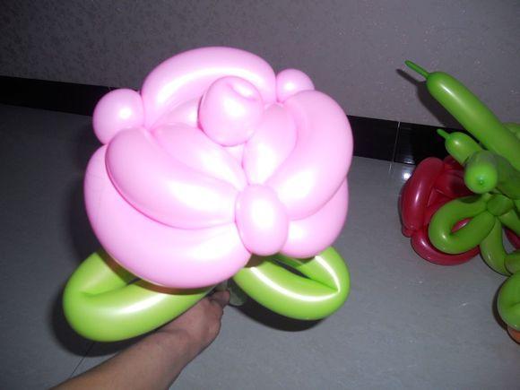 气球的扎法教程图玫瑰花分享展示图片