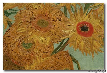 梵高油画技法研究 向日葵