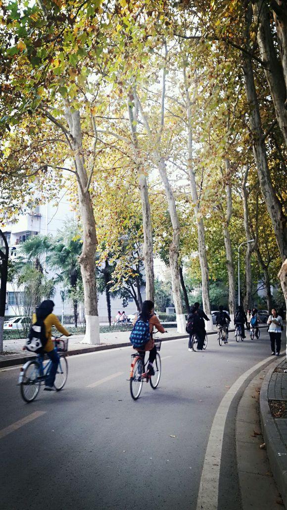 在信息学部下课时间的自行车流中穿行,感觉这才叫青春嘛