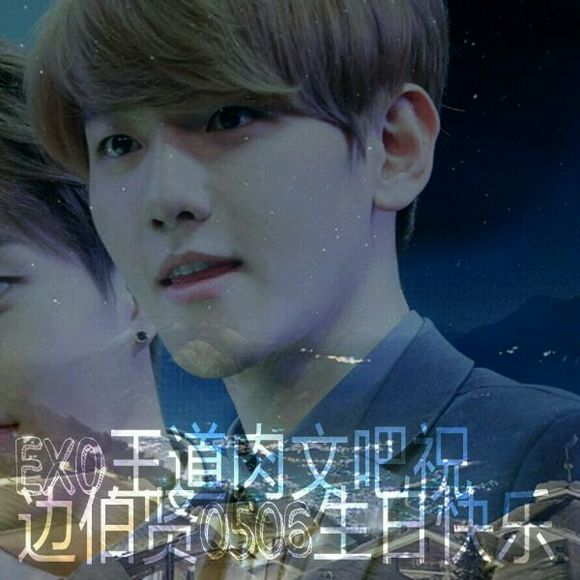 stepexo王道文txt