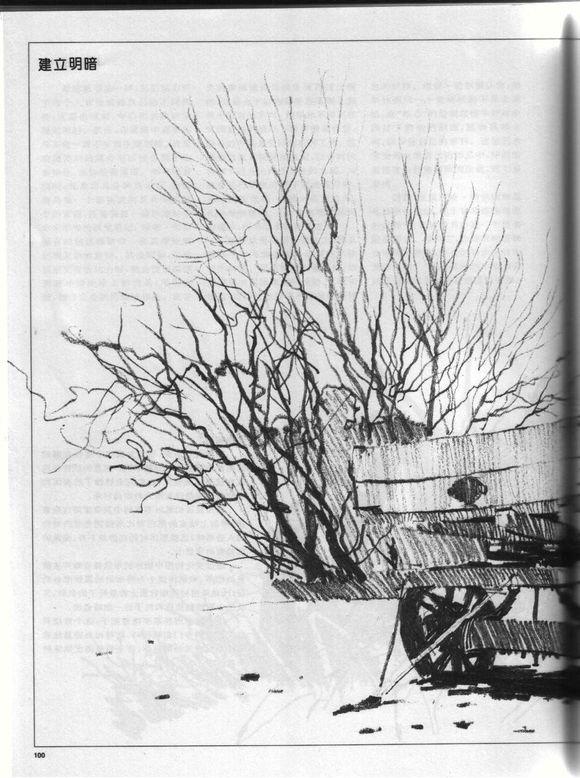 【图片】铅笔画技法【樱花美术讨论殿吧】_百度贴吧图片