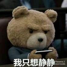 泰迪熊表情包图片