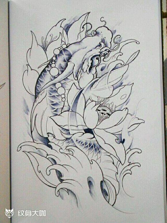 鲤鱼手稿图片