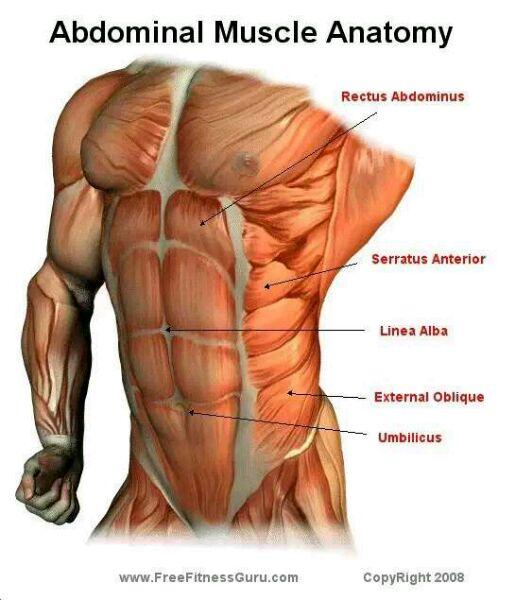 腹部空腔脏器穿孔