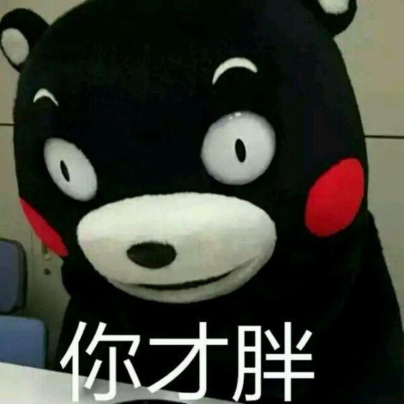 好像很多人都喜欢熊本熊表情包图片