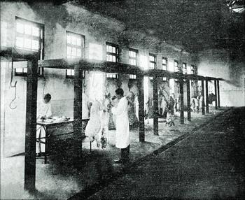 上世纪30年代广州市屠宰场的兽医在检验畜肉.