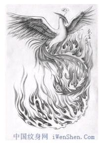 浴火凤凰满背纹身图片展示图片