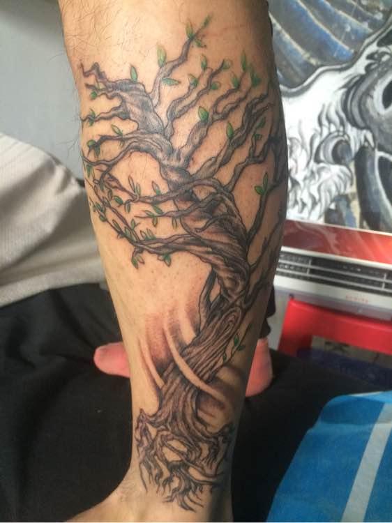 肩骨生命树纹身分享展示图片