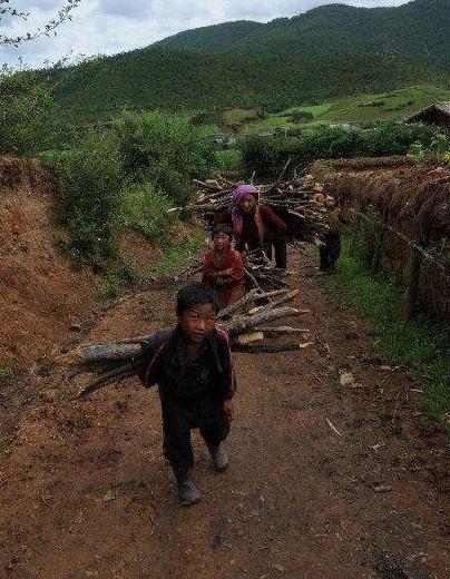 不要忘记中国农村9图片
