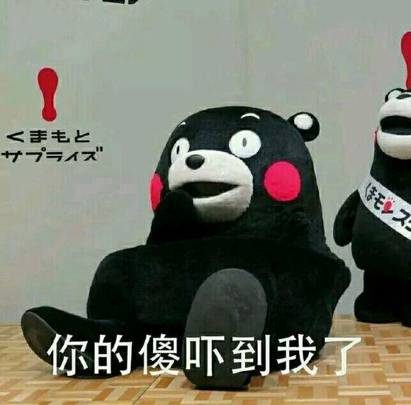熊本熊表情包图片