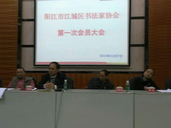 阳江市江城区书法家协会成立图片