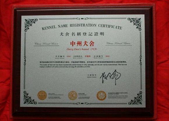 【河南郑州--中州犬舍】cku(fci)注册永久犬舍