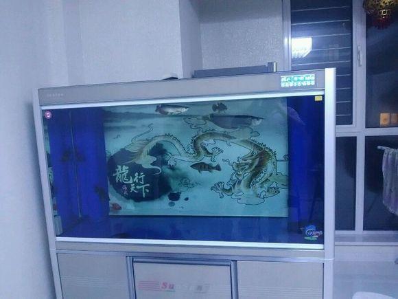森森鱼缸右侧上溢流下水声音大,怎么解决呀,咕咚咕咚的图片