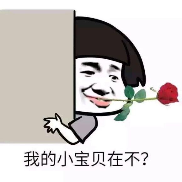 描述:QQ表情包 可爱搞笑 群聊图片 打人骂人 聊天问候 恋爱情感 心情