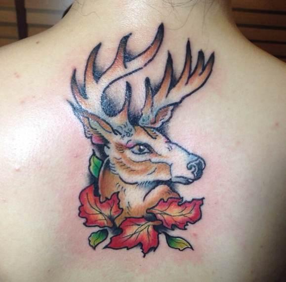 一组胸口个性彩色鹿纹身图案由武图片