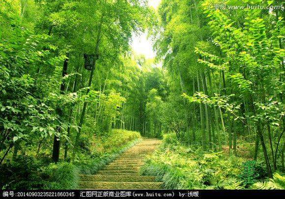 竹林山水美女图片
