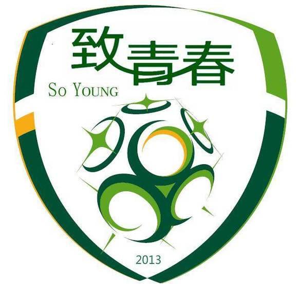 足球的logo设计-足球队徽logo设计/植物俱乐部logo设计/足球logo设计青海足球景观设计图片