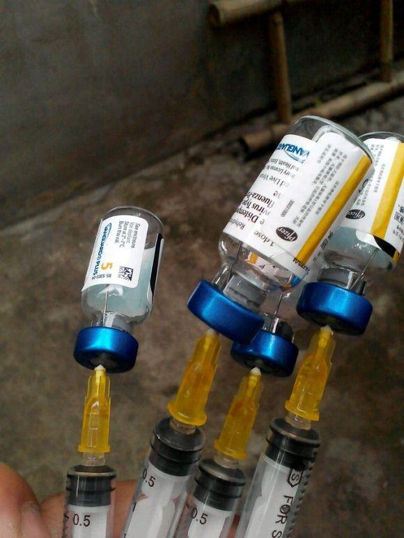狂犬疫苗第一次打两针