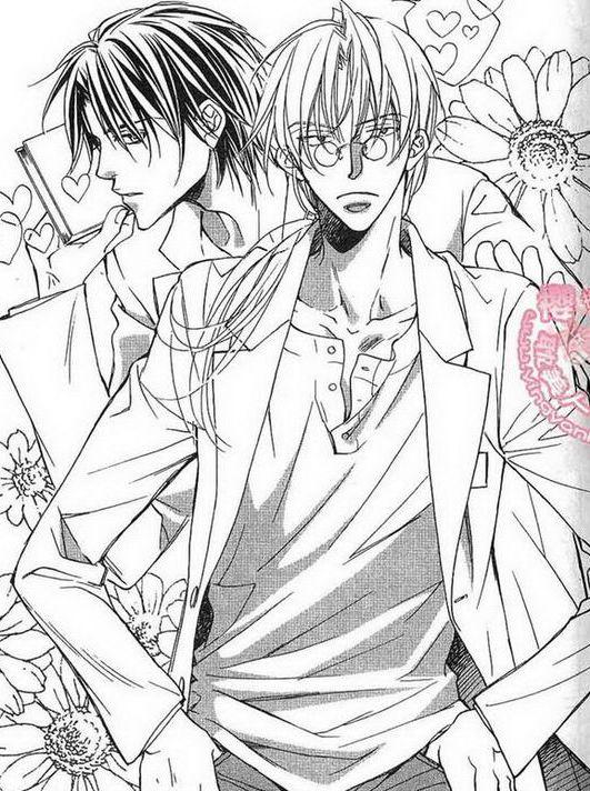 图片背景的菊花已经说明了一切