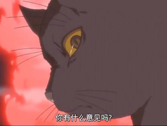 夜一sama猫状就是个惹不起的主儿,更别提人状了.图片