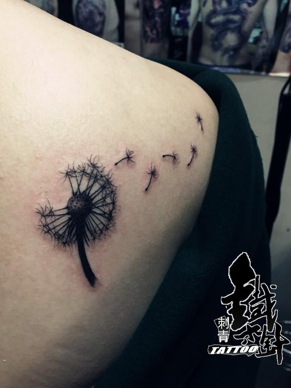 蒲公英纹身图案后背分享展示图片