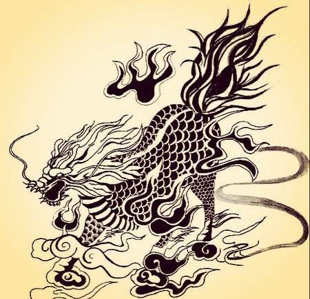 杨洋麒麟纹身 手稿分享展示 (450x434)图片