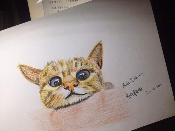 铅画猫咪手绘教程/彩铅猫咪教程图片/彩铅星空画法 ...