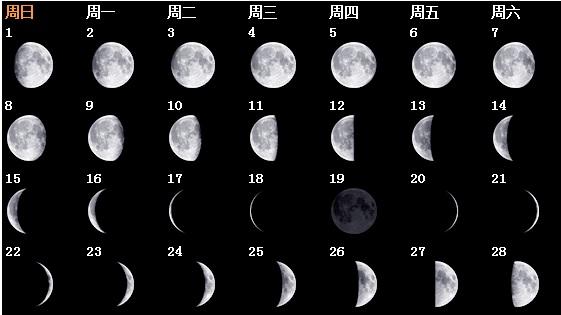 12月10号是什么星座:12月10日是什么星座?