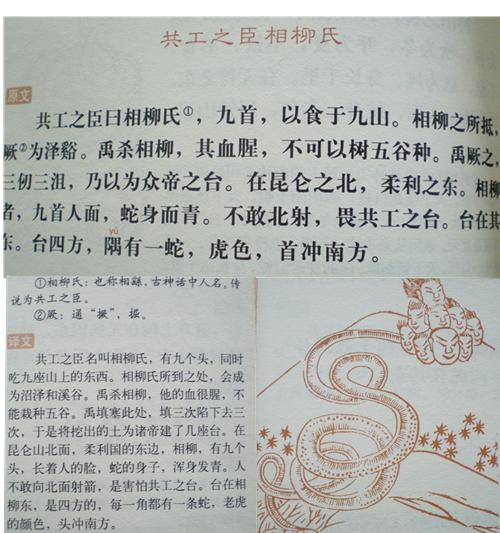 芍药小说书包网