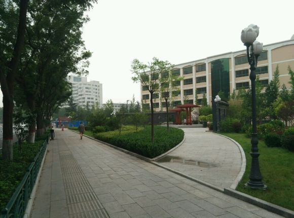 拆绿还绿,阳泉一中绿神拆除后建成小绿园,与南山公园隔南