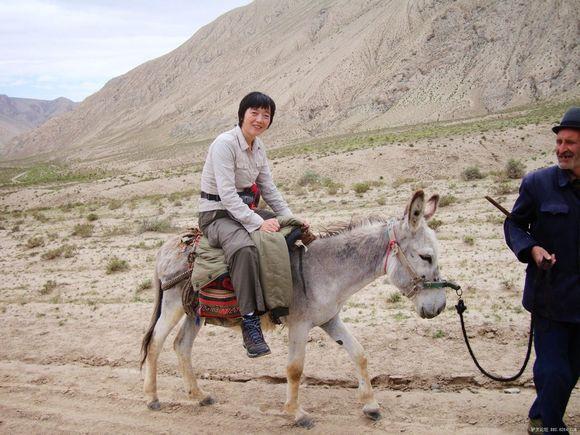 接下来的六天里 骑驴成了我