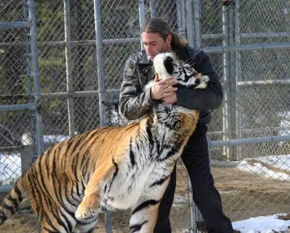 老虎吃人真实视频最新