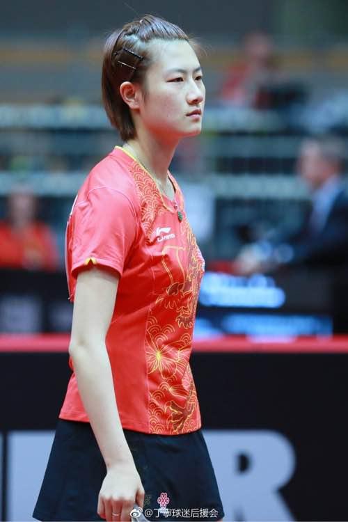 乒乓球体操500_750竖版竖屏澳大利亚斗鸡图片
