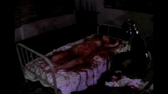 豚鼠系列2血肉之花