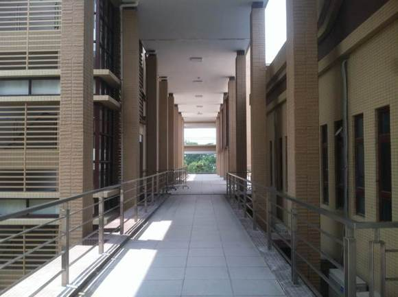暨南大学南校区的安详色霸气.图片