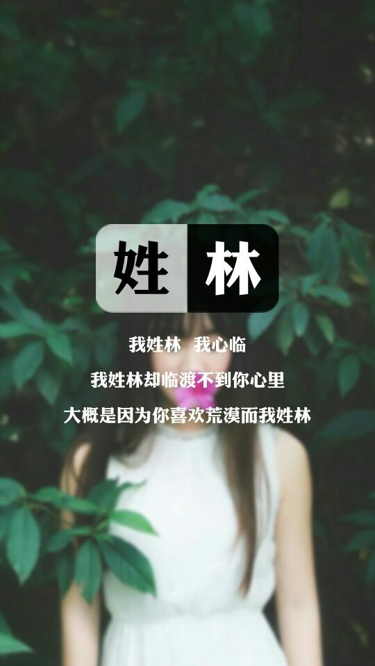 016【我姓林】图片