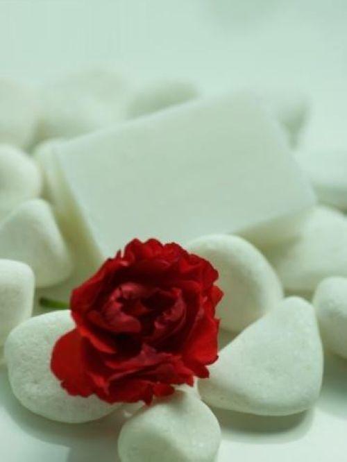 快乐是一朵花,在回忆里开的绚烂.图片