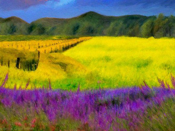 第二幅是展现的是清新靓丽的田园风光,看到后有一种儿时图片