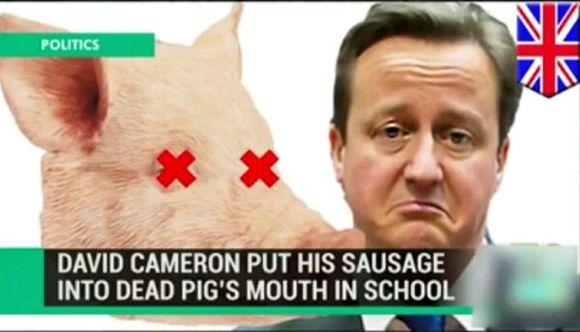 卡梅伦日猪是真的吗_【topic】关於卡梅伦x猪一事