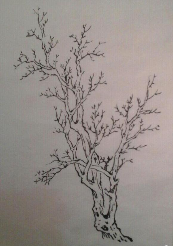 国画 简笔画 手绘 线稿 580_824 竖版 竖屏图片